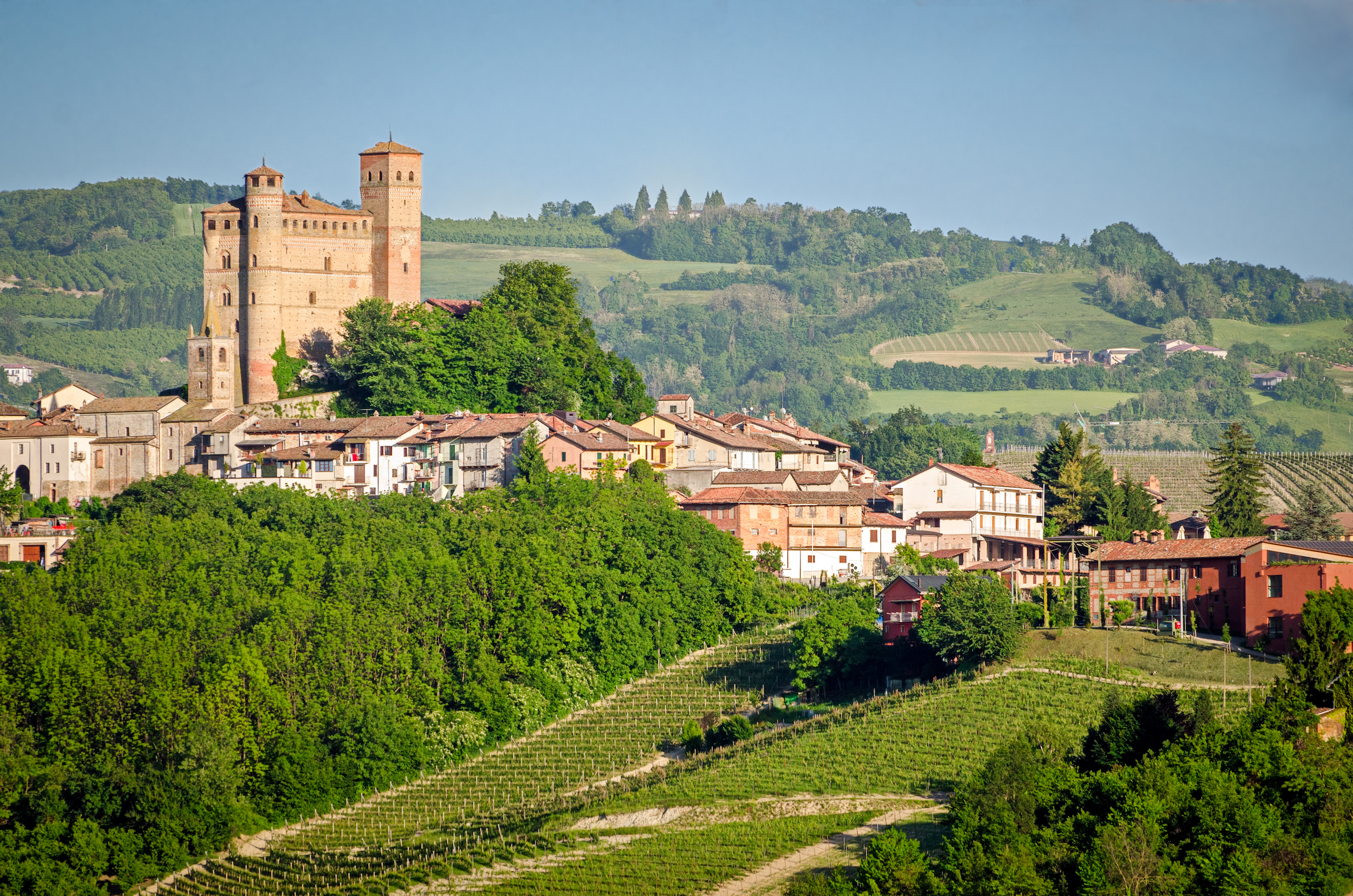 An insider's guide to the famed winemakers of Piedmont