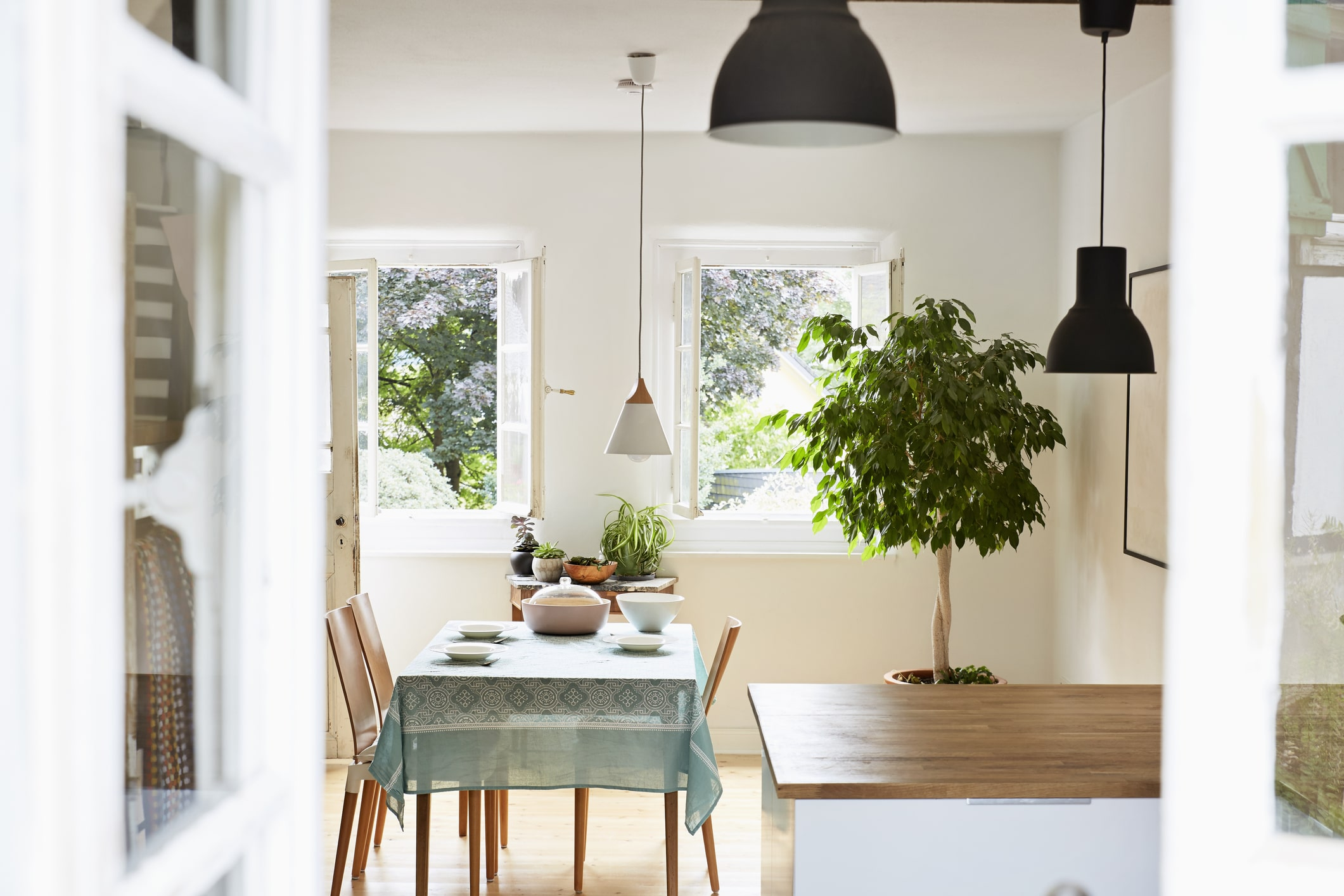 Air-purifying plants and the Pinterest-worthy ways to style them