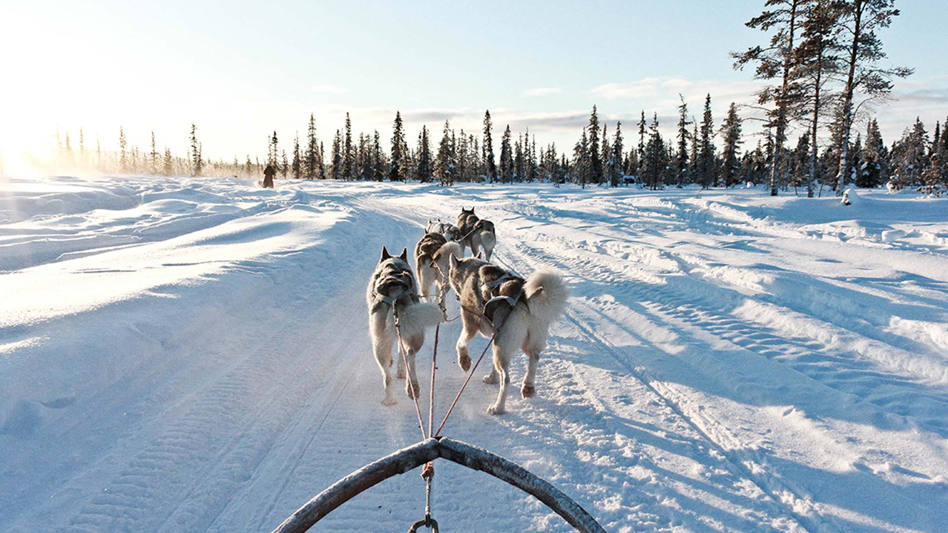 The best luxury winter lodges in the Swedish Lapland
