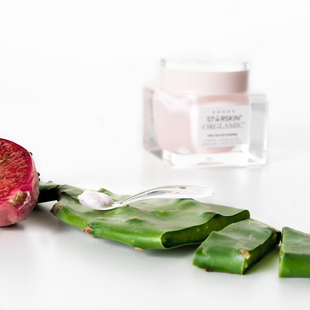 Why cactus water is the best ingredient for your skin, according to STARSKIN co-founder Nicole Arnoldussen