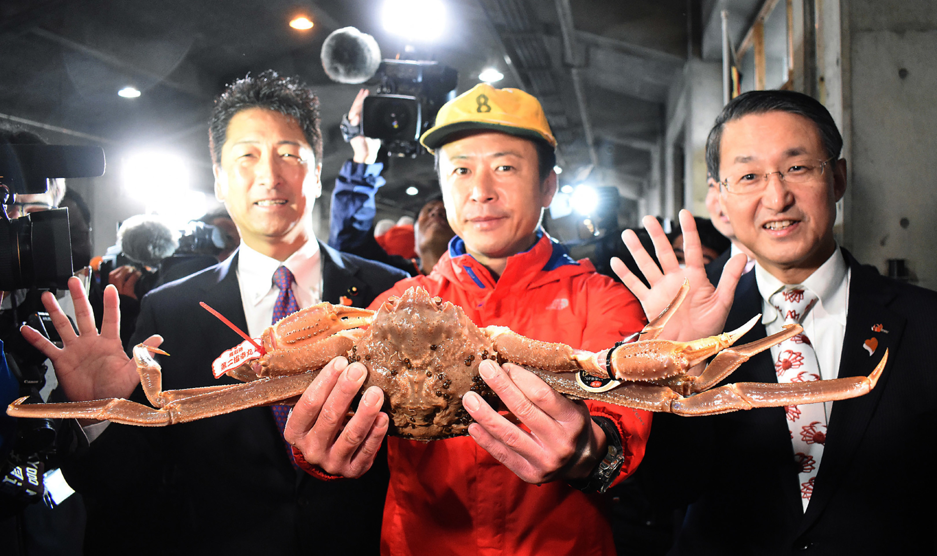 Expensive Eats: Japan crab sold for $46 000 at auction