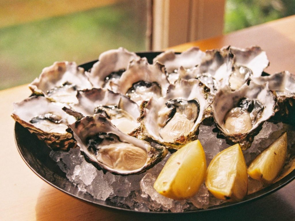 boost immune system - oysters