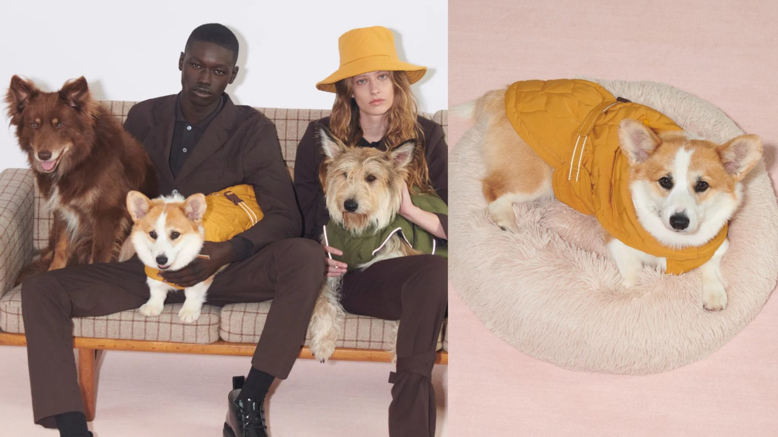 Vanity Fur: Match your best friend with Zara's Pet Collection