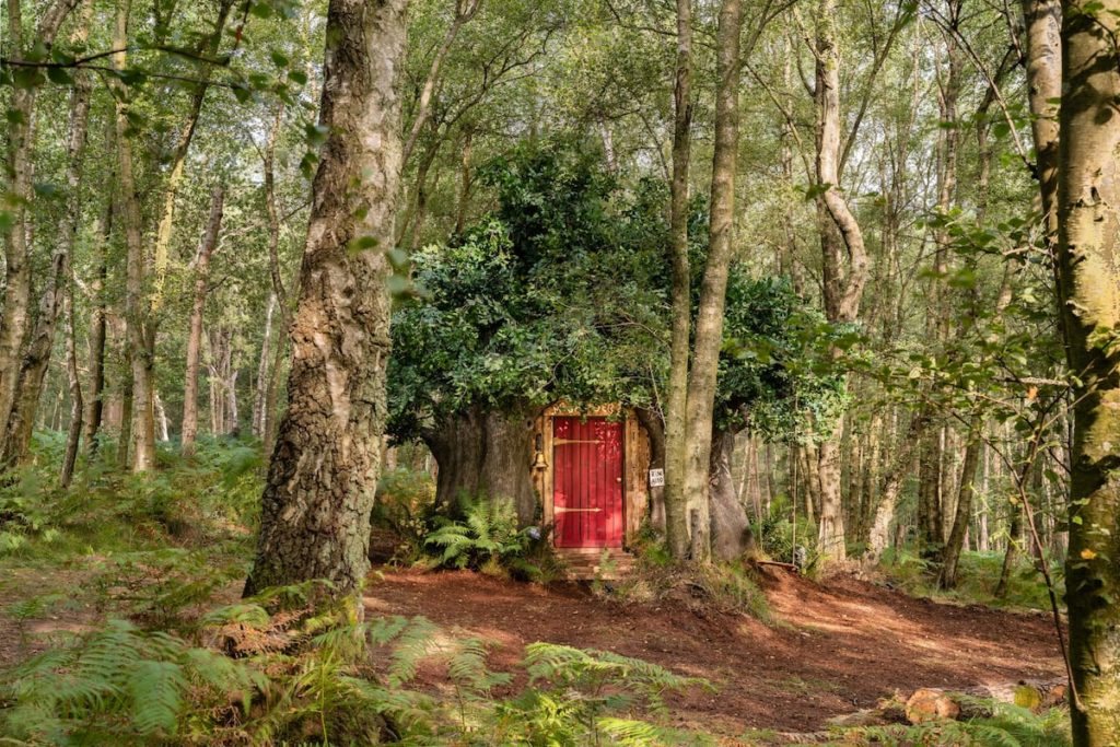 Disney Airbnb Winnie the Pooh