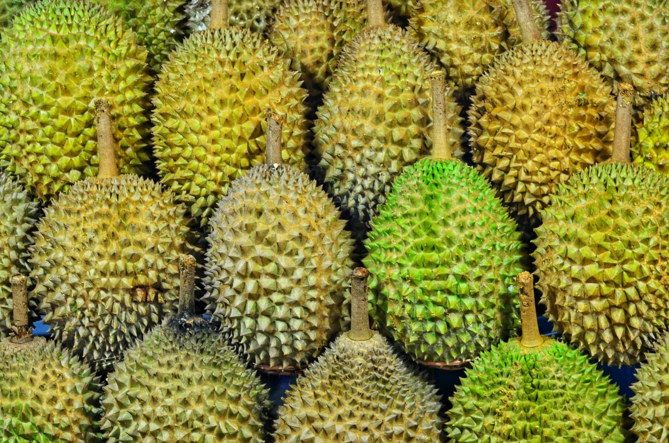 Brush up on your knowledge of durian varietals with this cheat sheet