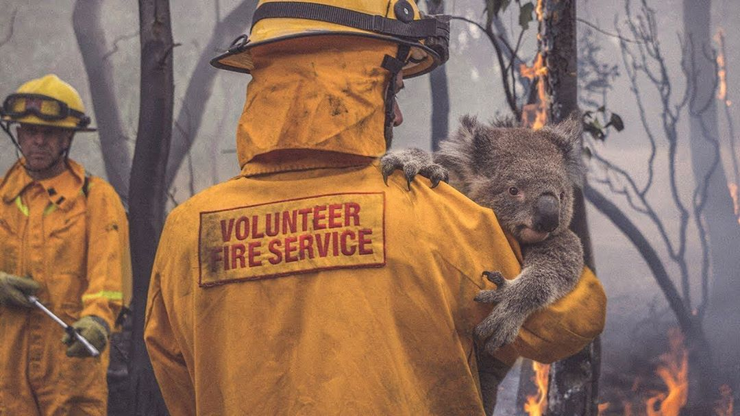 How fashion brands are supporting the Australian wildfires relief