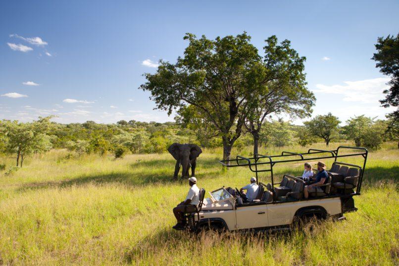 virtual african safaris