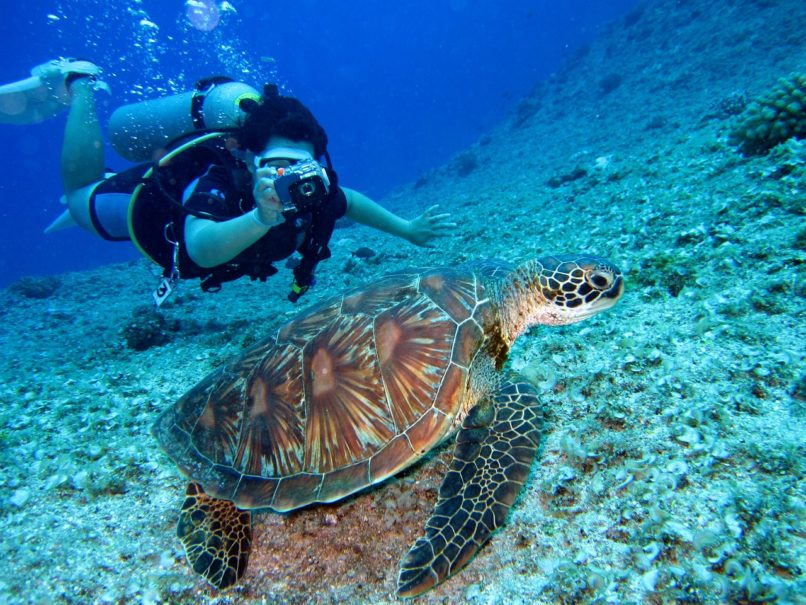 best diving spots in India