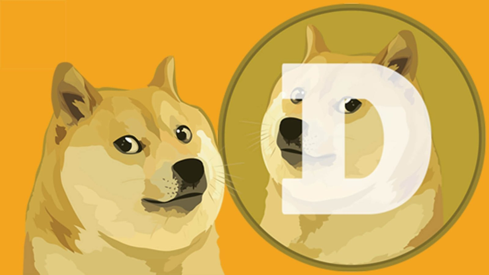 What is Dogecoin? With Elon Musk as Dogefather, value ...