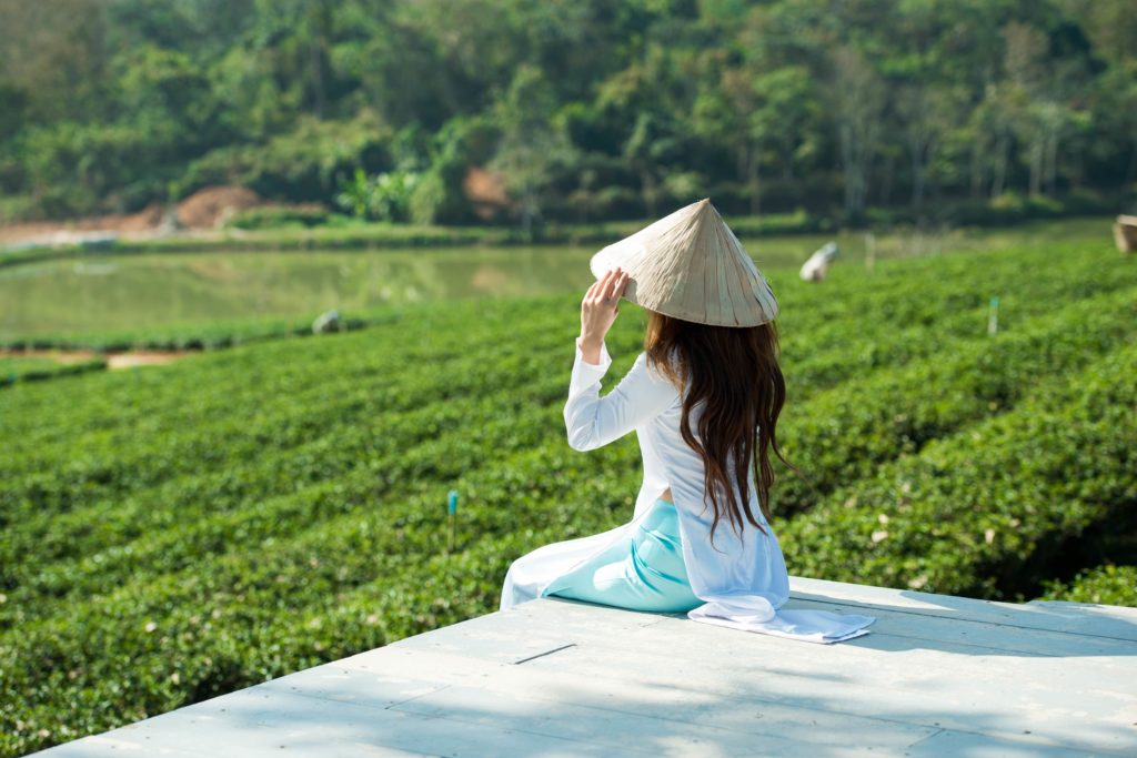 Chai and monsoon are calling us to India's gorgeous tea plantation stays